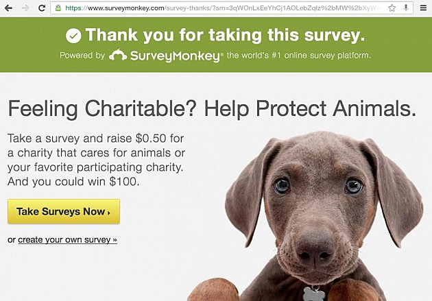 Survey Donation Protect Animals